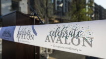 Celebrate Avalon: Phase II Grand Opening